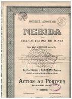 Titre Ancien - Société Anonyme De NEBIDA Pour L' Exploitation De Mines - Titre De 1929 - - Mines