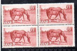 QUS - GERMANIA SARRE 1949 , N. 253/254  In Quartina Integra  ***  CAVALLI. Gomma Stanca - 1947-56 Occupazione Alleata