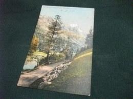 PICCOLO FORMATO  VAL VENI COURMAYEUR GRANDES JORASSES 1911 - Italie