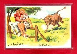 88-CPSM PADOUX - Autres Communes