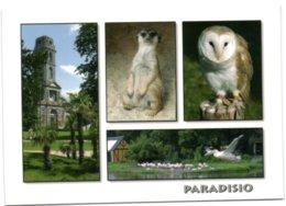 Cambron-Casteau - Parc Paradisio - Domaine De Cambron - Brugelette