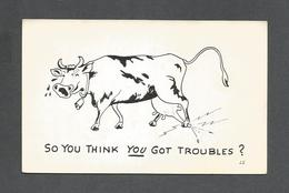 HUMOUR - INSOLITE - CARTE - SO YOU THINK YOU GOT TROUBLES   ? - Humour