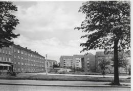 AK 0178  Reichenbach Im Vogtland - Platanenstraße / Ostalgie , DDR Um 1967 - Reichenbach I. Vogtl.