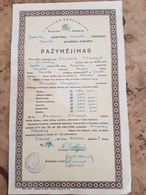 Lithuania 1940 Primary Schools Graduation Certificate - Diplomi E Pagelle