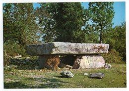 CPM  46    DOLMEN DE LA PIERRE MARTINE AUX ENVIRONS DE LIVERNON - Dolmen & Menhirs