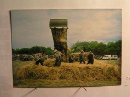Agriculture - Battage à L'ancienne - Fermes
