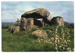 CPM  23   FELLETIN      CABANE DE CESAR - Dolmen & Menhirs