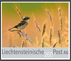 """Liechtenstein 2018: Offizielle Marke Der FL-Post """"Braunkehlchen"""" (Saxicola Rubetra) Zu CHF 2.60 (Europa-Brief 20 - 50 G) - Liechtenstein"""