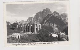 Alpi Giulie - Gruppo Del MONTASIO, Visto Dalla Val Dogna  (UD)  - F.G.  - Anni  '1950 - Udine