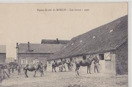 Ferme-école  De MERLES  Les Boxes 1920 - Altri Comuni