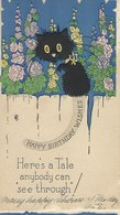 """Birthday Card. """"Read Through The Cat`s Tail"""". S-2948 - Old Paper"""