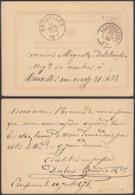 "BELGIQUE EP 5c OBL DC ECAUSSINNES 15/07/1876 BOITE ""LT"" FAIBLE VERS BRUXELLES (DD) DC-2303 - Stamped Stationery"