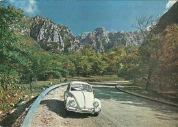 """2920 """"SERINO (AVELLINO) LA VETTA DEL MONTE TERMINIO M. 1786 - VW MAGGIOLINO"""" CARTOLINA POSTALE ORIGINALE NON SPEDITA - Avellino"""