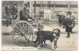 BEAUVAIS - Marchand De Poissons - Attelage De Chiens - Beauvais