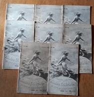 Bulletins Theodore Champion 1928 - Stamps