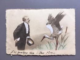 OOIEVAAR - CIGOGNE - Stork - Storch - Vogels