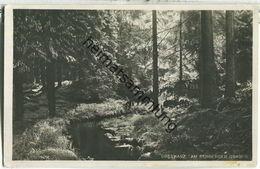 Am Rehberger Graben - Foto-Ansichtskarte - Verlag R. Lederbogen Halberstadt 30er Jahre - Allemagne