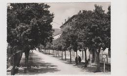 LANGHIRANO (PR), Viale Vittorio Veneto   - F.G.  - Anni  '1950 - Parma