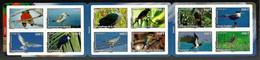FRENCH POLYNESIA 2010 BIRDS PLOVER PIGEON TROPIC BIRD BOOKLET MNH - French Polynesia