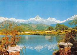 Népal - Mont Machhapuchare - Courtesy : K.P. Pradhan - Timbres - Nepal