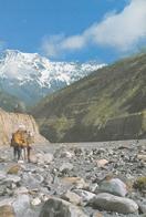 Népal - Kali Gandaki Valley - Photo : Mukunda B. Shrestha - Timbres - Népal