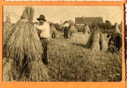 HA193, La Récolte Du Blé, Normandie, 5193, Circulée 1937 - Cultures