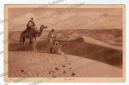 AFRICA - CAMMELLO CAMEL - Cartoline
