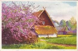 PAYSAGE--maisons + Arbre Fleuri--voir 2 Scans - Fantaisies