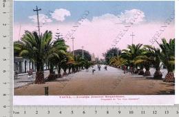 Tacna Peru Chile Perù Cile Avenida Jeneral Baquedano Animada Cromolitografico Cromolitografia Cromolithograph - Perù