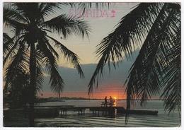 FLORIDA Impressions - The Evening Sun Paints A Splendor Over The Florida Waters - (Phtoto : John Gordash) - Etats-Unis