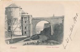 CPA - Belgique - Namur - Château Des Comtes - Namur