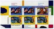 NETHERLANDS/NEDERLAND - 1996 ELDERY PERSON M/S MINT NH - Blocchi