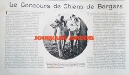 1900 CONCOURS CHIENS DE BERGERS LEVALLOIS PERRET - CLUB FRANCAIS DU CHIEN DE BERGER - Newspapers