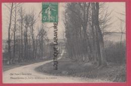 76 - MESNIERES----L'Avenue Du Chateau - Mesnières-en-Bray