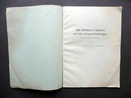 Primo Rinvenimento Di Odontoceto Nello Schlier Appennino Modenese Montanaro 1934 - Vecchi Documenti