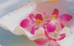 Télécarte Japon / 110-011 - Fleur - ORCHIDEE & Coquillage - ORCHID Flower & Shell Japan Phonecard - 2375 - Fleurs
