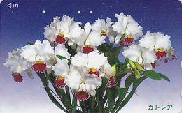 Télécarte Japon / 110-016 - Fleur - ORCHIDEE - ORCHID Flower Japan Phonecard - ORQUIDEA -  2377 - Fleurs