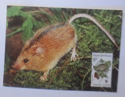 Tiere WWF Tschechien Birkenmaus  Maximumkarte   1985 ♥ (57859) - W.W.F.