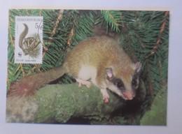 Tiere WWF Tschechien Baumschläfer  Maximumkarte   1996 ♥ (57861) - Sonstige