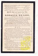 DP Rosalie De Leu Deleu / VanNeste ° Rollegem-Kapelle Ledegem 1822 † 1904 - Devotion Images