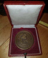 Rare Medaille Bronze De 5 Cm Dans Ecrin Offert Par Peugeot Cycliste Années 20 - Autres