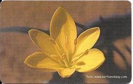 -CARTE-PUCE-TURQUIE-100-2003--CROCUS JAUNE--TBE - Fleurs