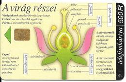 -CARTE-PUCE-HONGRIE-500Ft-2002-Fleurs Details Fonctionnement-BE - Fleurs