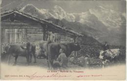 CPA Dept 05 LA GRAVE Vaches Traite - France