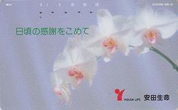 Télécarte Japon / 110-67095 - Fleur - ORCHIDEE - ORCHID Flower Japan Phonecard / Motif MD 110-176 - 2400 - Fleurs