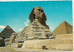EGIPTO  (GUIZA) - Guiza
