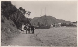 Picton New Zealand, People Walk Along Path At Shore, Harbour Ship, C1910s Vintage Real Photo Postcard - New Zealand