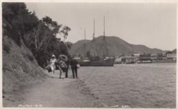 Picton New Zealand, People Walk Along Path At Shore, Harbour Ship, C1910s Vintage Real Photo Postcard - Nouvelle-Zélande