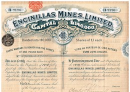Titre Ancien - Encinillas Mines Limited - Titre De 1905 - Mineral