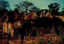 CHATEAU FORT SOMBA....CPM - Benin